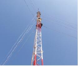 anten cot